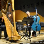 cello-harp-2-4-1514987_964987870202033_7715116552482721786_n