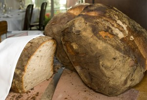 Rebstock Brot